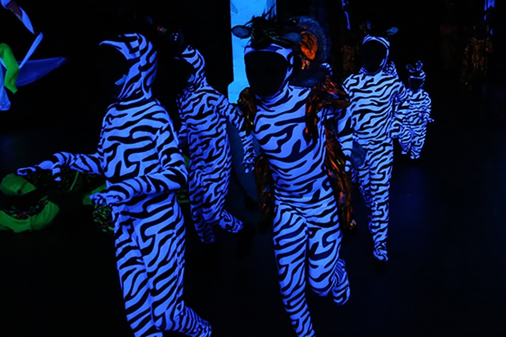 Zebras Blacklight
